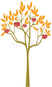 abstract rowan tree stock vector illustration of decorative