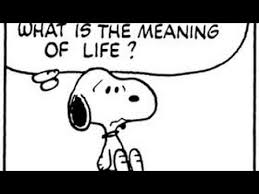 what is the meaning of snoopy the epic discuss the meaning of