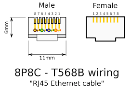 wiring diagram for rj45 connector cat5 cable endear ansis me best of