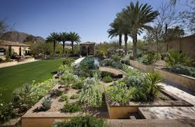 Palm Tree Patio Umbrella Breathtaking Collection Of Phoenix Landscape Designs U2013 Home Info