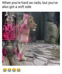 Side By Side Meme Generator - 25 best memes about memes memes meme generator