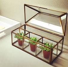 What Plants Are Cubicle Friendly by 28 Cubicle Decor Diy Ideas