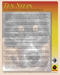 australian shepherd issues foxwood kennel u2022 welcome