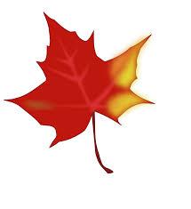hd autumn leaves pile clip art fall leaf photos