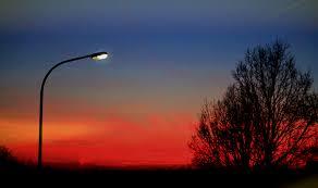 free images horizon branch cloud sun sunrise sunset night