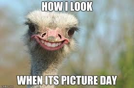 Ostrich Meme - funny ostrich meme generator imgflip