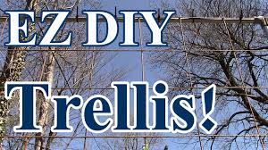 2 min tip ez diy trellis to grow tomatoes watermelon squash