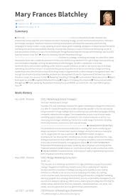 Examples Of Ceo Resumes by Brand Strategist Resume Samples Visualcv Resume Samples Database