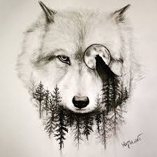 wolf drawing art pencil on instagram a r t pinterest animal
