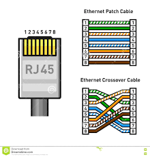 ethernet wiring diagram wall jack floralfrocks