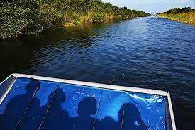 top 10 florida boat tours cruises