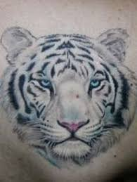 etheridge search tattoos tiger