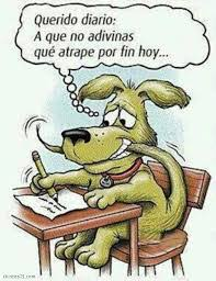 resultado de imagen para perros chistes humor