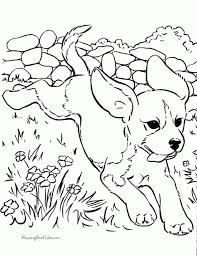 realistic dog coloring pages intended to inspire in coloring page