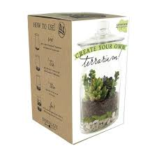 Design Your Own Home And Garden by Syndicate Home Garden Diy 8 In Terrarium Kit 100 06 00 The Home