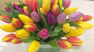 different big flower shops different available flowers youtube