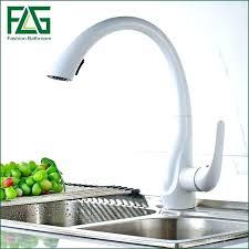 moen extensa kitchen faucet extraordinary moen extensa faucet kitchen faucet white kitchen