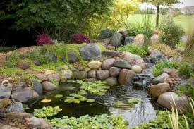 Small Water Features For Patio Small Water Gardens Hometalk