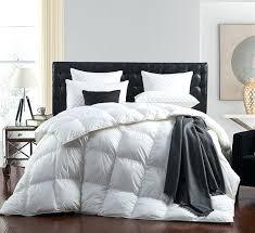 Where To Get Bedding Sets Miller Bed Sets Bedding Comforter Set Paisley King