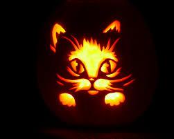 hello kitty halloween costume best 25 kitty costume ideas on