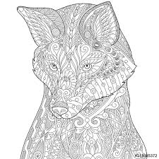 stylized fox wolf or dog isolated on white background freehand