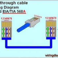 ethernet cable splitter wiring diagram yondo tech