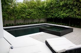 overflowing pool and spa for luxury backyard design ideas nytexas