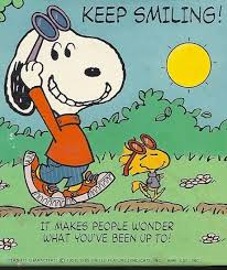 247 snoopy images peanuts snoopy charlie