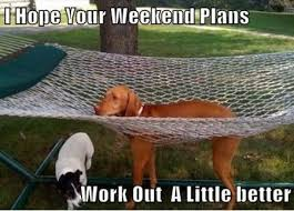 Funny Weekend Meme - weekend plans funny weekend meme