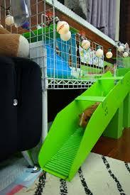 diy guinea pig stair u2026 squishy beandip pinterest pig stuff