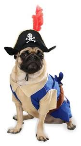 Halloween Costumes Small Dogs Amazon Pirate Pup Halloween Costume Small Dog Costume Pet