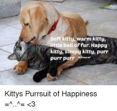 Sleepy Kitty Meme - 25 best memes about happy kitty happy kitty memes