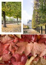 autumn in paris dark blue stripes