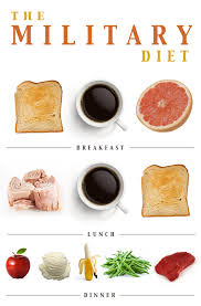 military diet plan to lose weight