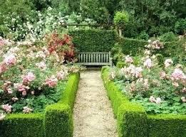 garden plant crossword clue frivforkid club
