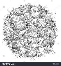 circle black white ornament seashells starfish stock vector