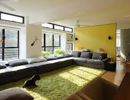Modern Green Rug Magnificent Contemporary Living Room Rug And Living Room Rugs