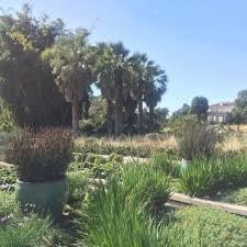 Botanical Gardens Huntington Huntington Library Collections Botanical Gardens 8462