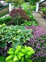pinterest flower garden ideas what flowering plants are good for