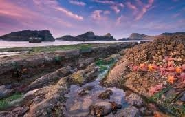 rocky shore wallpapers port sunset natural hd wallpaper wallpapers new hd wallpapers