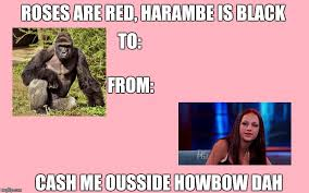 Valentine Meme - roses are red harambe is black cash me ousside howbow dah valentine