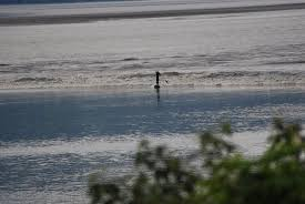 Anchorage Tide Table Bore Tide In Turnagain Arm Girdwood Ak Top Tips Before You Go