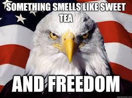 Sweet Tea Meme - something smells like sweet tea and freedom america eagle