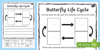 butterfly cycle sentence writing worksheet activity sheet