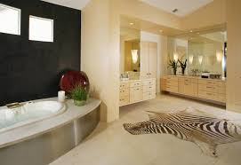 Zebra Bathroom Decorating Ideas by Magnificent Elegant Bathroom Decor Ideas With Nice Chandlier And