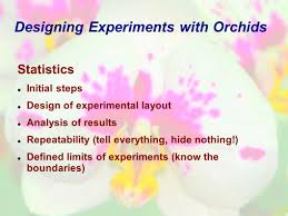 designing experiments with orchids presented by ian parsons ppt