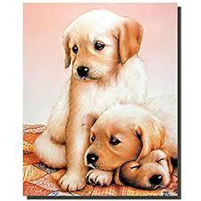 amazon cute puppies sleeping dogs kids room art print