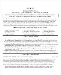 sample executive resume it manager resume example manager resume