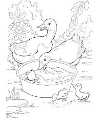 farm animals coloring page 921 best kids coloring pages images on pinterest drawings
