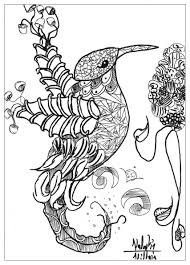 cool coloring pages adults animals bird valentin birds coloring pages for adults justcolor